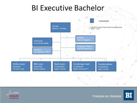 BI Executive Bachelor Online-team BM-team Studiestedene