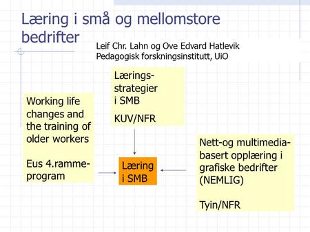 Læring i små og mellomstore bedrifter Lærings- strategier i SMB KUV/NFR Working life changes and the training of older workers Eus 4.ramme- program Nett-og.