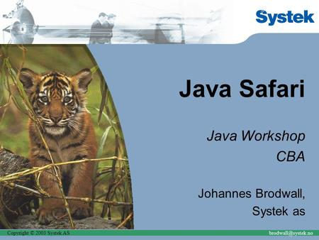 Copyright © 2003 Systek Java Safari Java Workshop CBA Johannes Brodwall, Systek as.