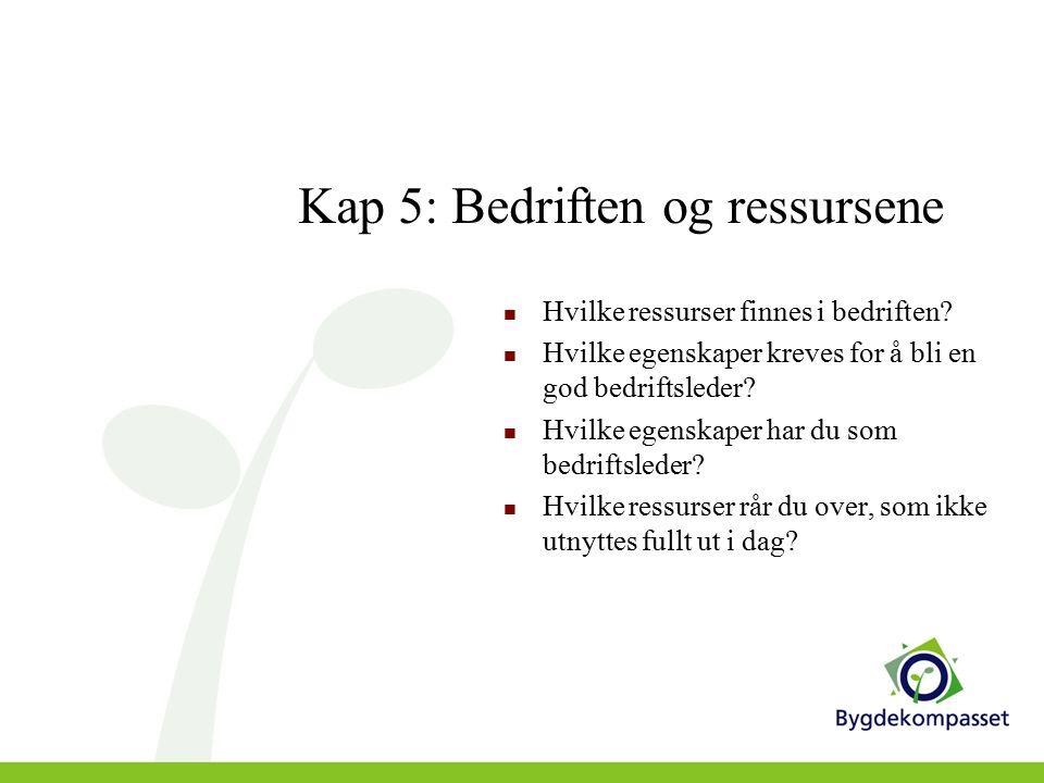 Kap 6: Økonomisk analyse Bygdekompasset er IKKE et økonomisk analyseverktøy.