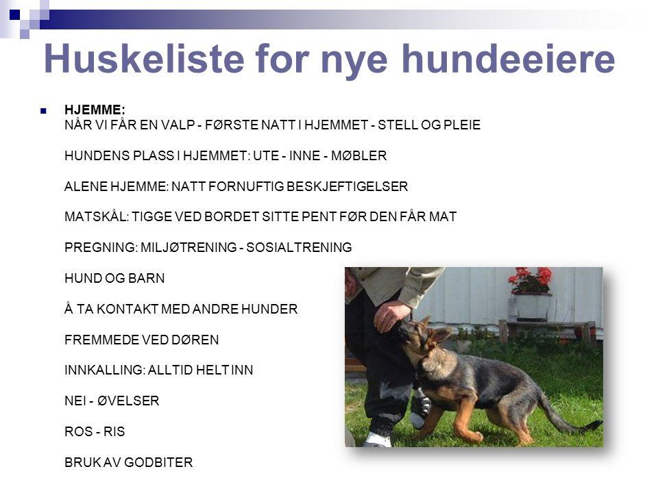 Spørreskjema I forbindelse med treningen kan du bli oppmerksom på hvilke problemer du føler at du har med din hund.