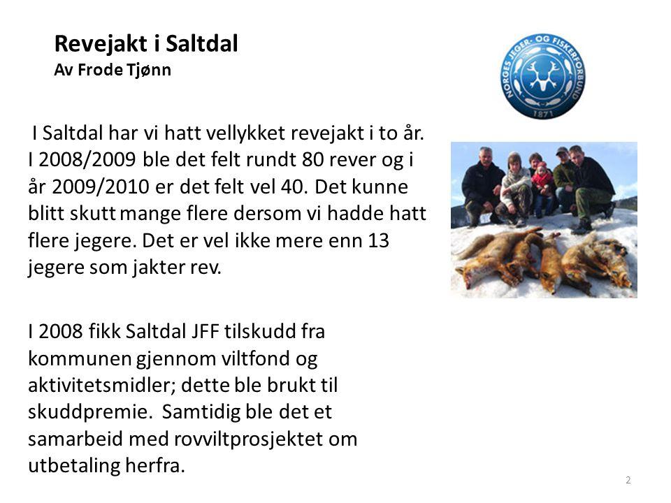 Revejakt i Saltdal Av Frode Tjønn I 2009 Ble det på nytt gitt støtte på 20.000 kroner til skuddpremie.