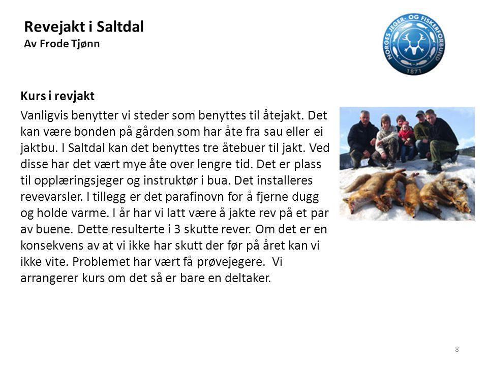 Revejakt i Saltdal Av Frode Tjønn Åte til jakt Åte til buene får vi fra Jernbaneverket eller viltnemda i kommunen.