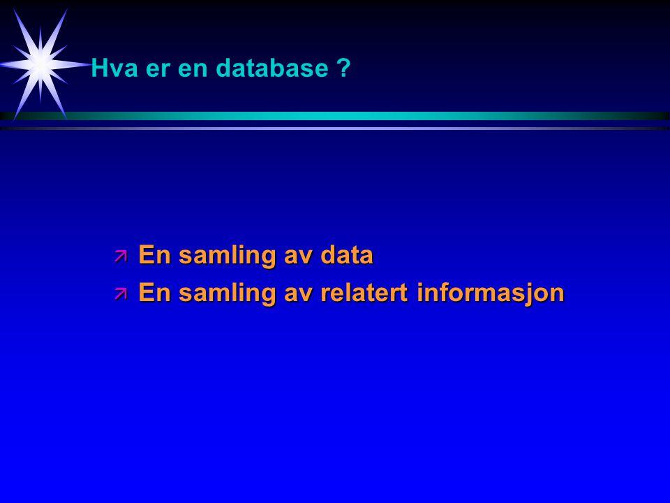 Hva er en database .