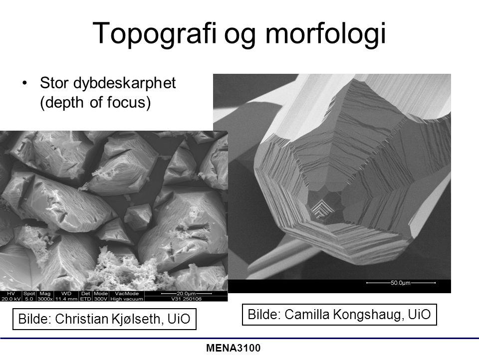 MENA3100 Dybdeskarphet Optisk mikroskopi vs SEM •I SEM har vi flere størrelsesordner større dybdeskarphet enn i et optisk mikroskop •SEM passer utmerket til å studere røffe overflater •Desto større forstørrelse, desto lavere dybdeskarphet Lengde på skrua ~ 0,6 cm Bilder: the A to Z of Materials