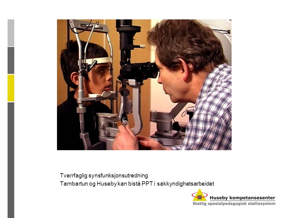 Tverrfaglig synsfunksjonsutredning Tambartun og Huseby kan bistå PPT i sakkyndighetsarbeidet
