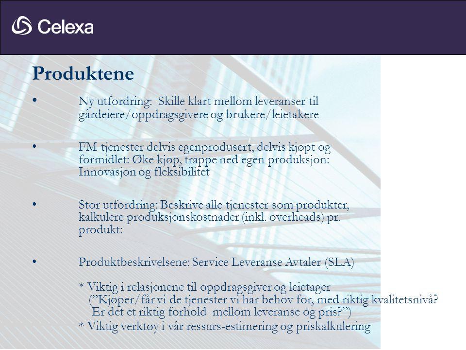 Systemene • Nye regnskaps-, fakturerings- og rapporteringsbehov: -nytt selskap (Celexa) -nytt konsern (Aberdeen P I) - nye gårdeiere/oppdragsgivere - nye leietakere • Kritisk: Behov for nye rutiner: Bestilling > Leverandør > Registrering faktura > Kontering • Løsriving fra NSB-konsernsystemer og NSB intranett • Kjøp av tjenester fra NSB • Etablering og utvikling av egne nye systemer