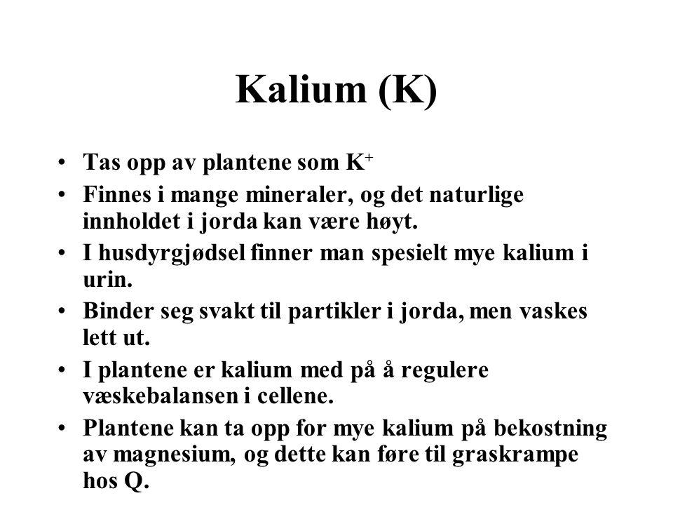 Næringskrav (K) •Korn:3-8 kg/daa •Potet:12 kg/daa •Kløverrik eng:10-16 kg/daa (delt) •Beite:0-3 kg/daa