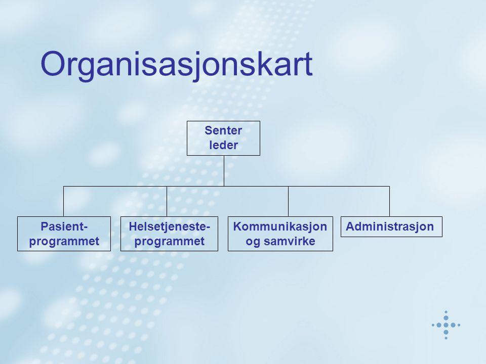 Ansatte Pr.31/12 2003 Teknologi 29 Helse/medisin 32 Økonomi 2 Jus 2 Administrasjon 19 Design 1 Samfunns- Vitenskap 18