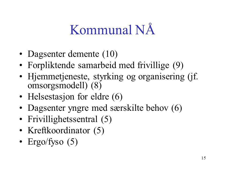 Kommunal MELLOMLANG –Samarbeid frivillige (4) –Dagsenter yngre med behov (3) –Ergo-/fysio (3) LANG –Samarbeid frivillige (2) –Sykehjemslege (2) –Styrka hjemmetjeneste, organisering (2) 16