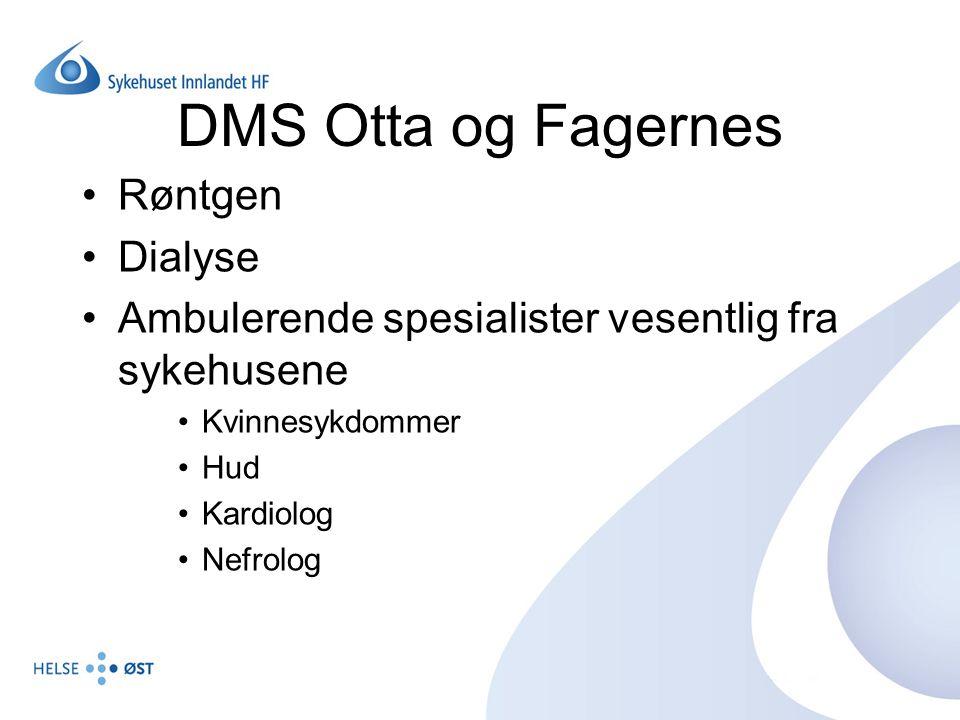 Rammeavtale (1) Hvilke tjenester vurderes av den enkelte divisjonsdirektør i samarbeid med kommunelege 1 i vertskommunen SI har det økonomiske og faglige ansvar for spesialisthelsetjenesten ved DMSet Separate avtaler for hver enkelt tjeneste