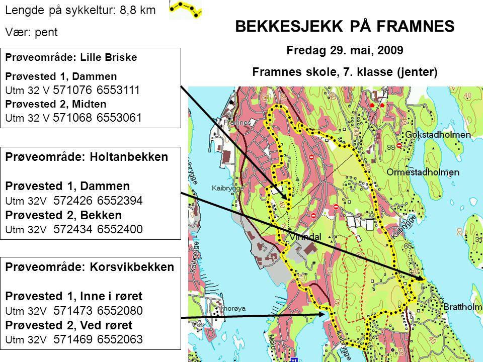 BEKKESJEKK PÅ FRAMNES Fredag 29.mai, 2009 Framnes skole, 7.