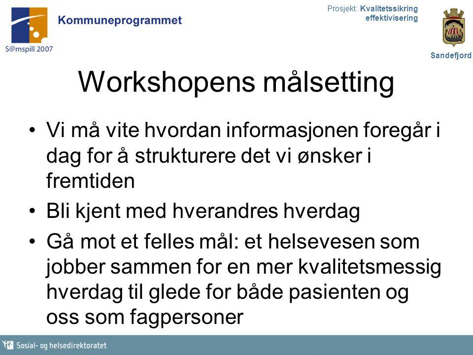 Prosjekt: Kvalitetssikring effektivisering Sandefjord Hj.tj.