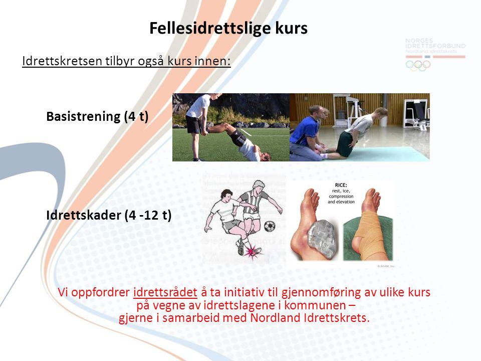 Tilskudd til idrettskoler Støtte til idrettskoler for barn 6 - 12 år Støtte til idrettsskoler (YouAct-grupper) for ungdom 13-19 år Oppstartstøtte -Kr.