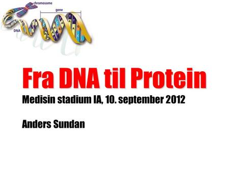 Fra DNA til Protein Medisin stadium IA, 10. september 2012 Anders Sundan.