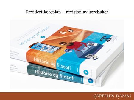 panorama norsk nettside Hønefoss