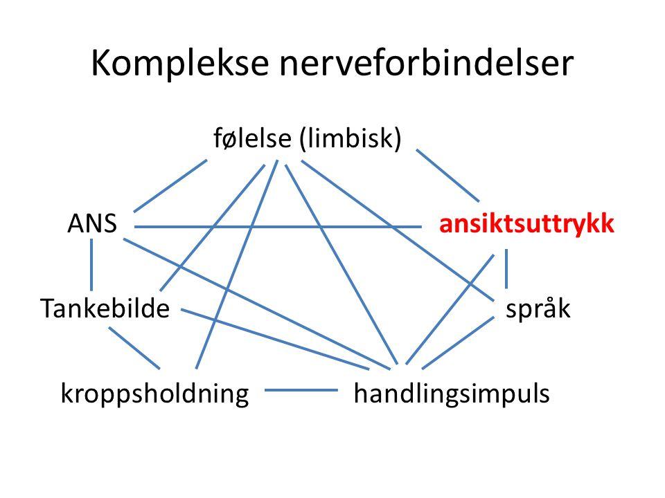 Komplekse nerveforbindelser følelse (limbisk) ANSansiktsuttrykk Tankebildespråk kroppsholdning handlingsimpuls