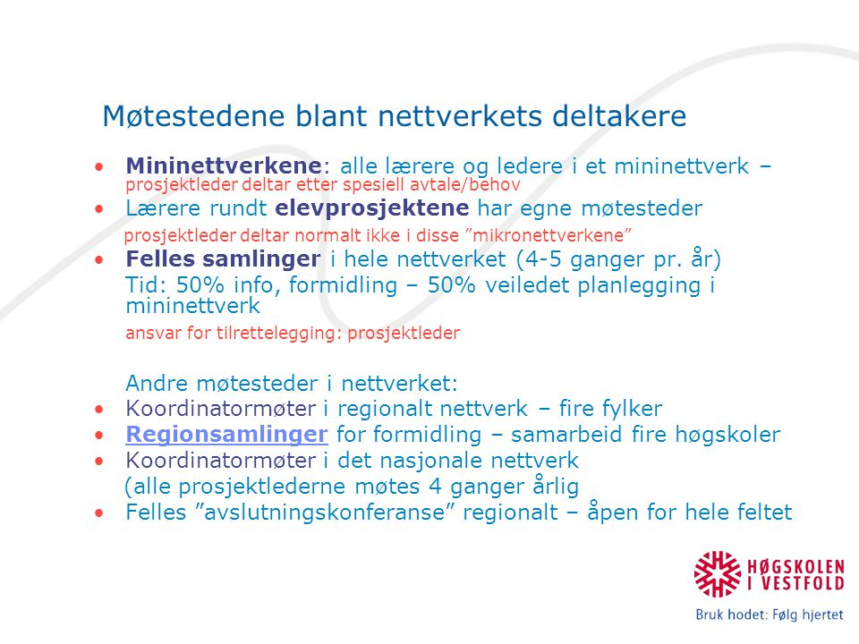 Mininettverkene som hovedarena i LN Vestfold.
