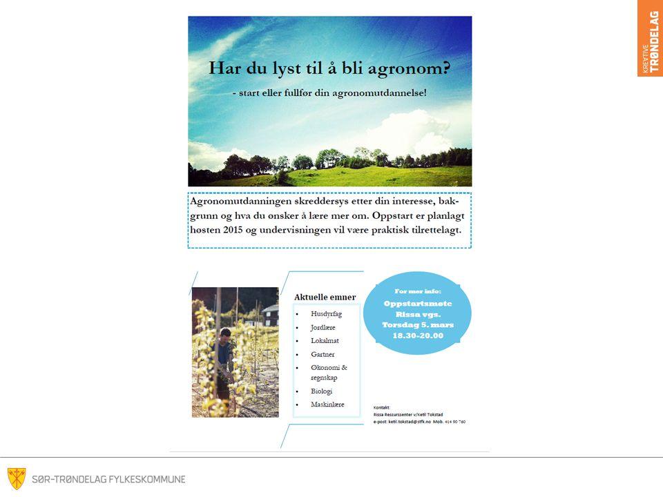Disse muligheter kan du studere på: www.vilbli.no