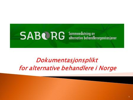Dokumentasjonsplikt for alternative behandlere i Norge 1.