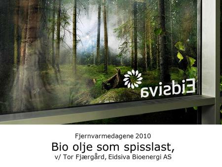 Eidsiva Energi AS -Drivkraft for oss i innlandet