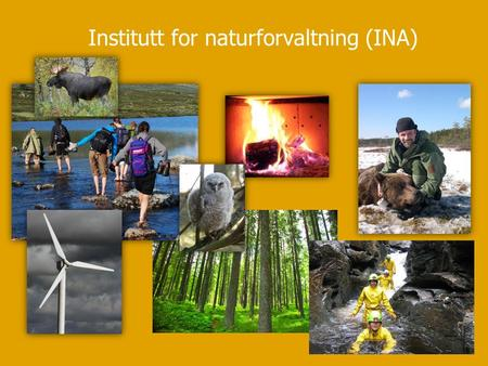 Institutt for naturforvaltning (INA). UNIVERSITETET FOR MILJØ- OG BIOVITENSKAP www.umb.no Hva interesserer INAs studenter seg for? Jorunn Vallestad (Institutt.