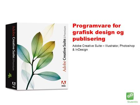 Programvare for grafisk design og publisering Adobe Creative Suite – Illustrator, Photoshop & InDesign.