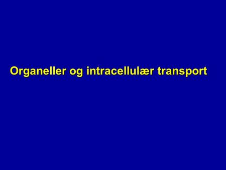Organeller og intracellulær transport