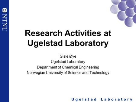 U g e l s t a d L a b o r a t o r y Research Activities at Ugelstad Laboratory Gisle Øye Ugelstad Laboratory Department of Chemical Engineering Norwegian.