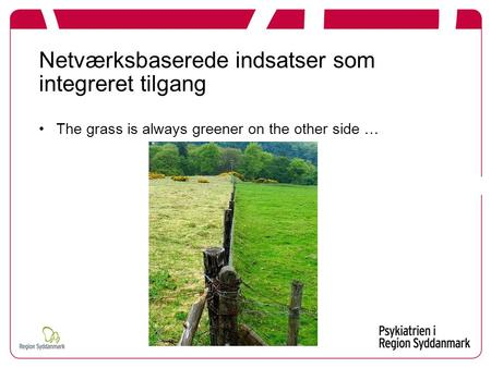 Netværksbaserede indsatser som integreret tilgang The grass is always greener on the other side …