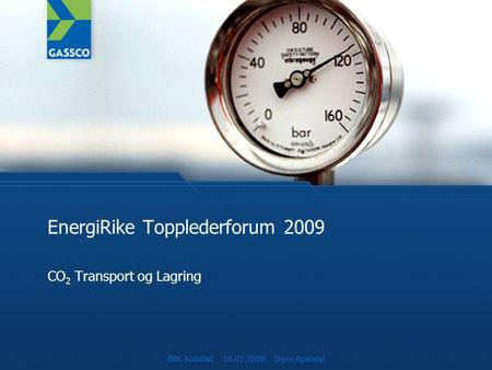 EnergiRike Topplederforum 2009 CO 2 Transport og Lagring BKK Kokstad 28.01.2009 Sigve Apeland.
