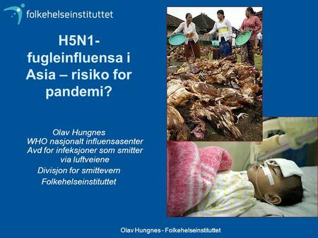 H5N1-fugleinfluensa i Asia – risiko for pandemi?
