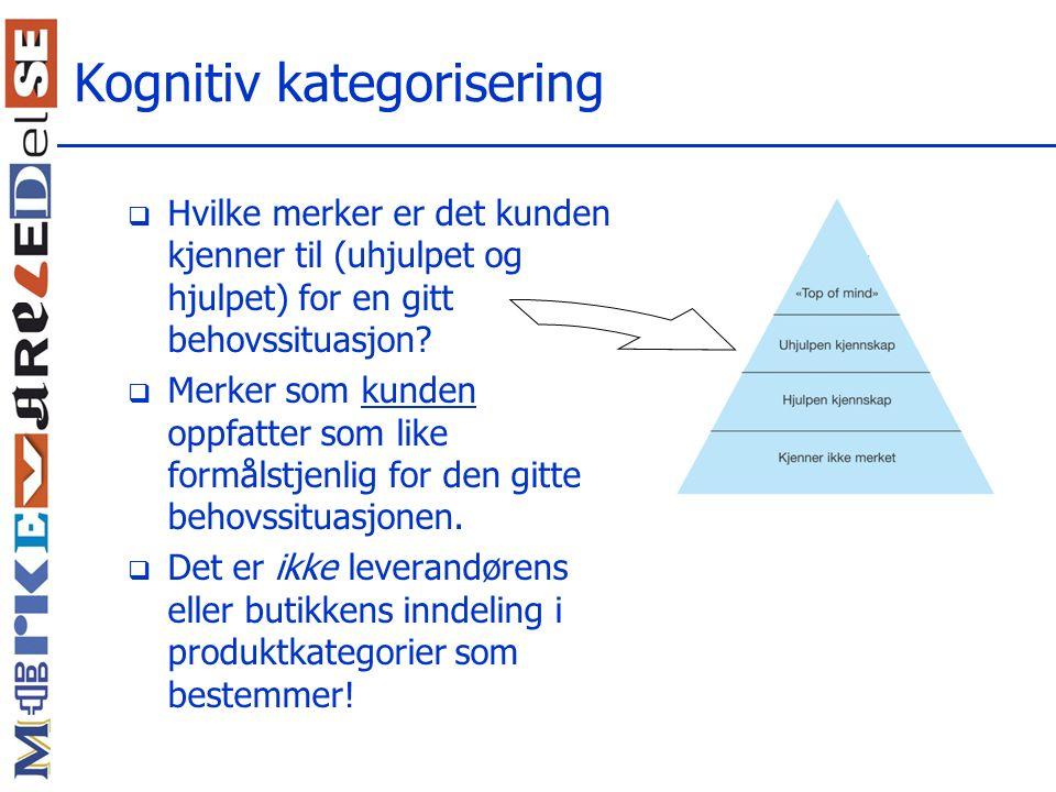 Kognitiv kategorisering
