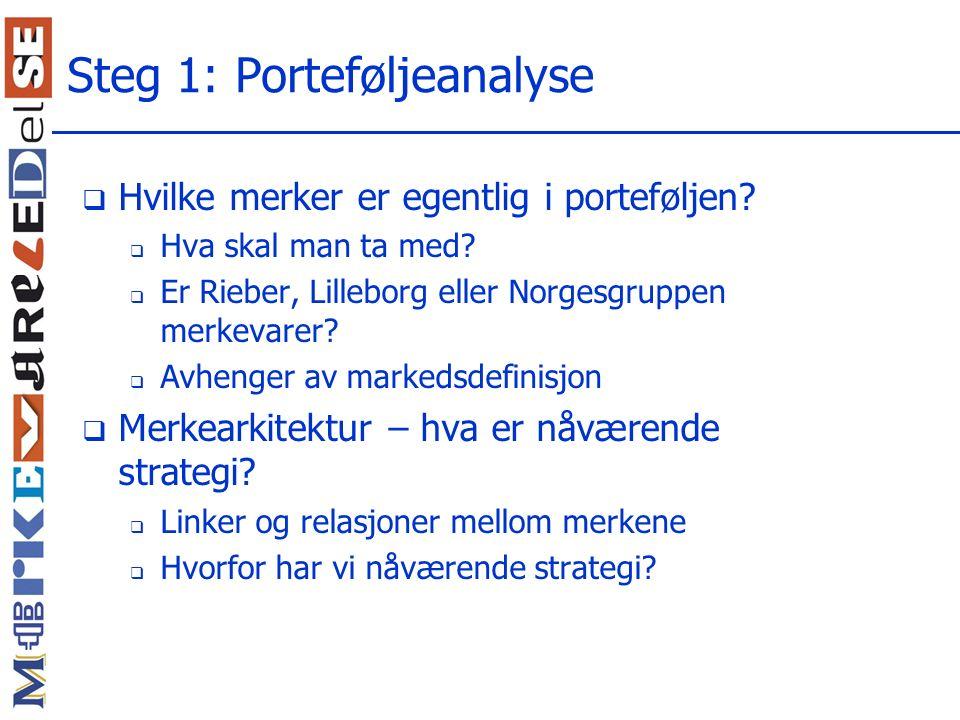 Steg 1: Porteføljeanalyse