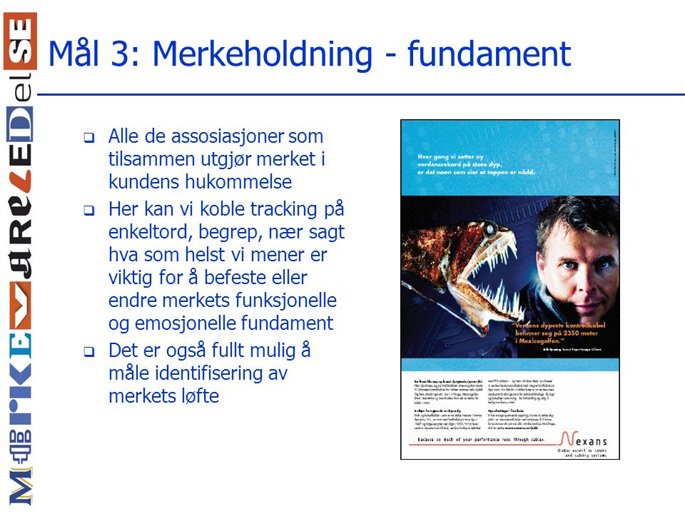 Mål 3: Merkeholdning - fundament