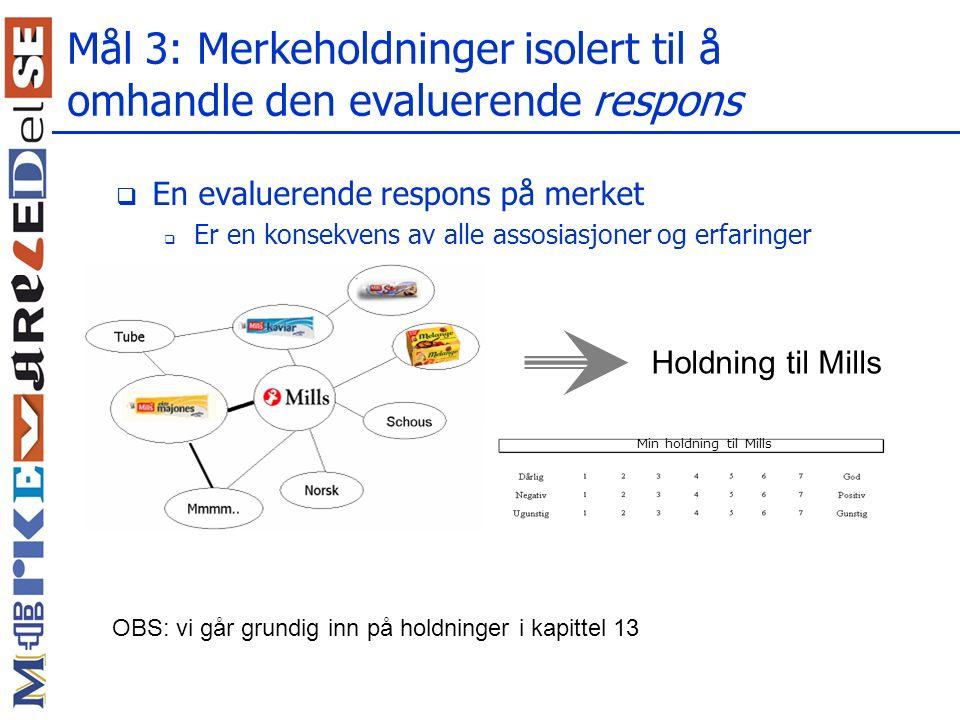 Mål 3: Merkeholdninger isolert til å omhandle den evaluerende respons