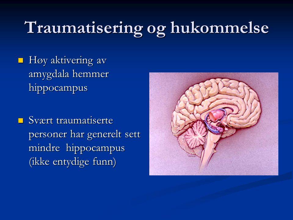 Traumatisering og hukommelse