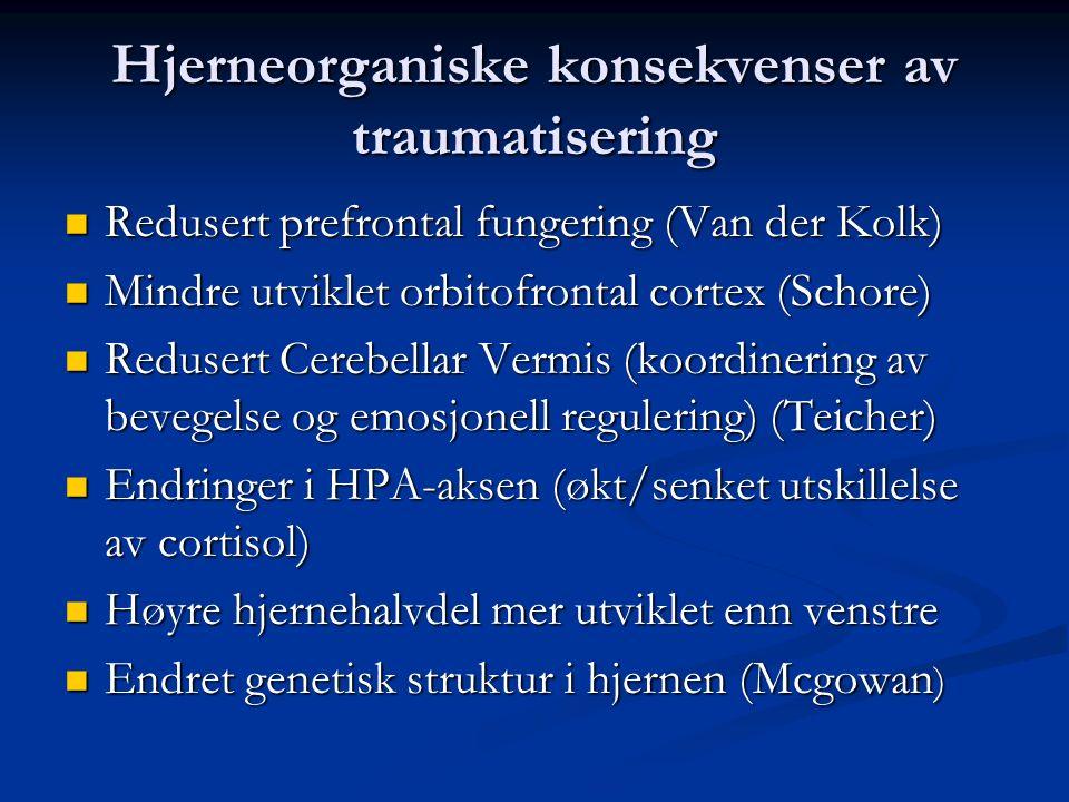 Hjerneorganiske konsekvenser av traumatisering