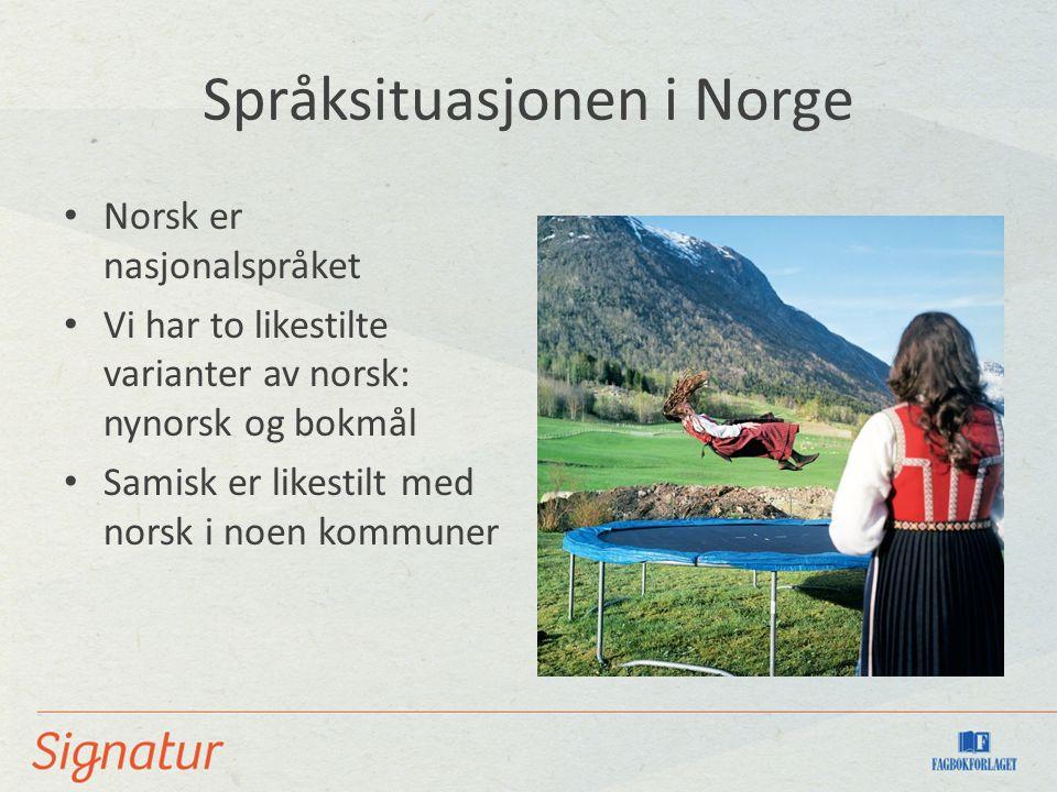 Språksituasjonen i Norge