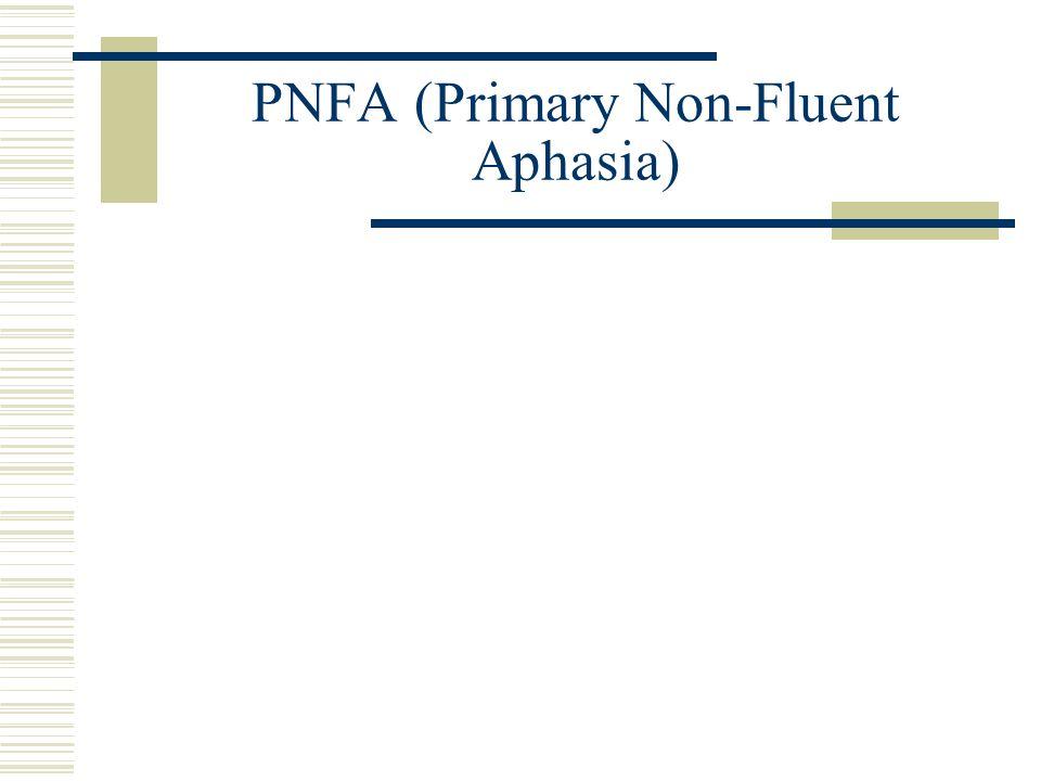 PNFA (Primary Non-Fluent Aphasia)