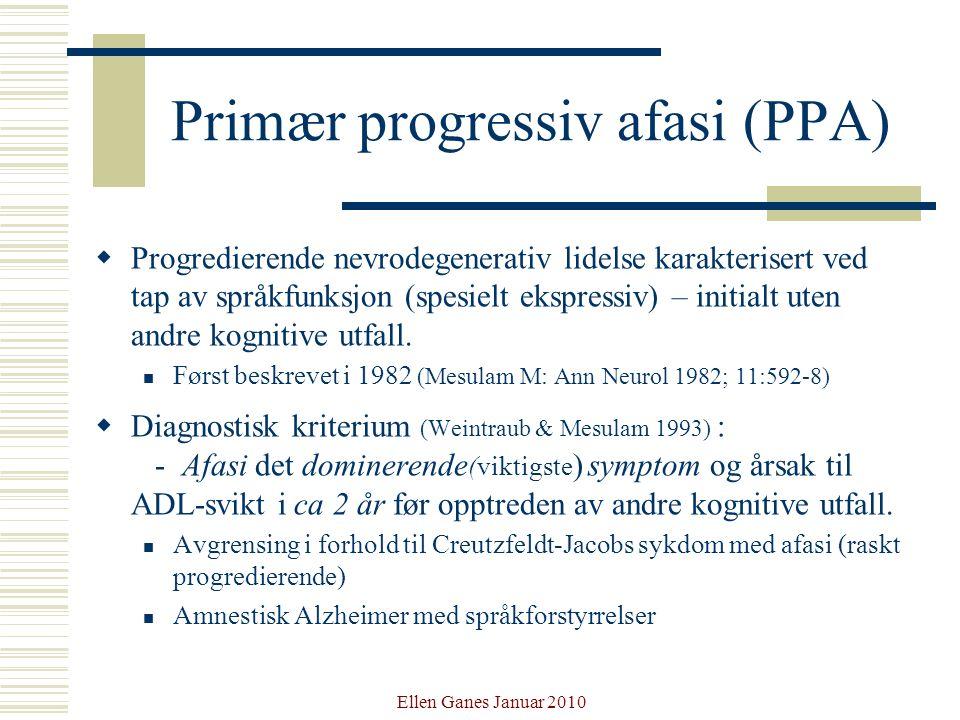 Primær progressiv afasi (PPA)