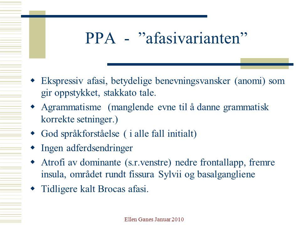 PPA - afasivarianten