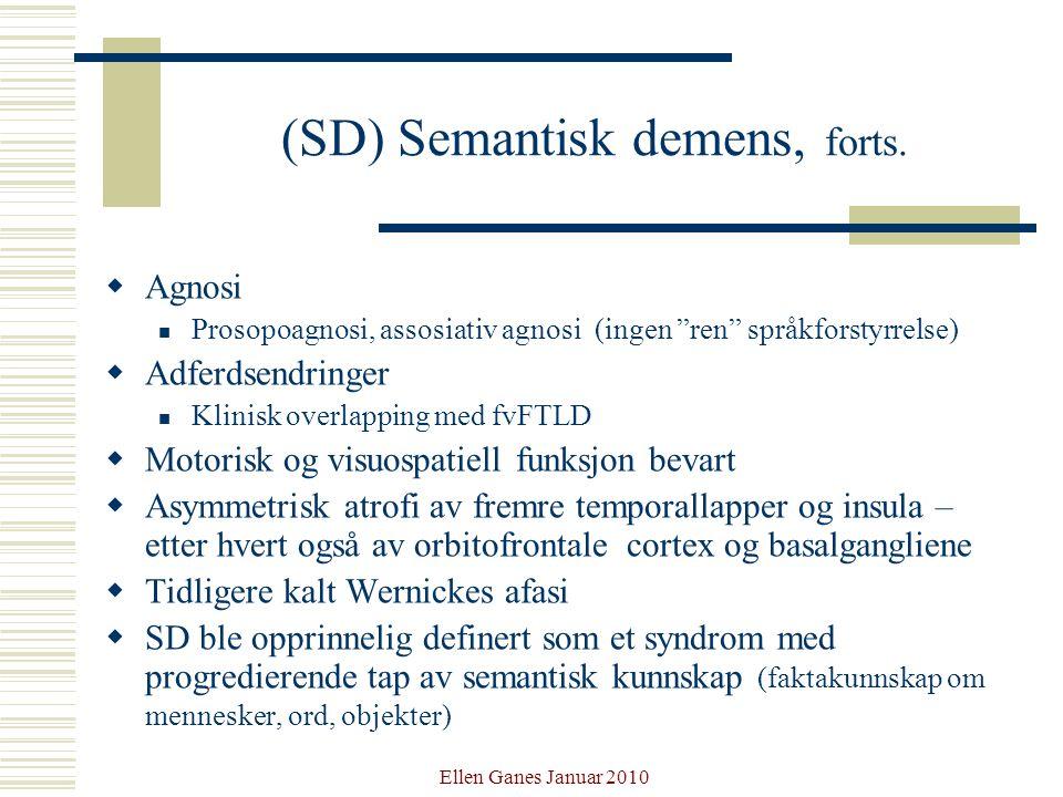 (SD) Semantisk demens, forts.