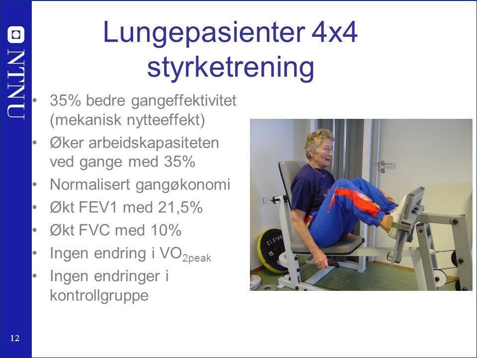 Lungepasienter 4x4 styrketrening