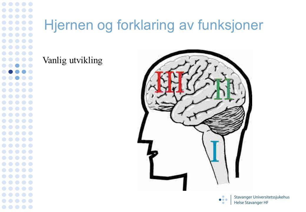 Hjernen og forklaring av funksjoner