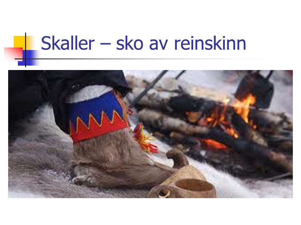Skaller – sko av reinskinn