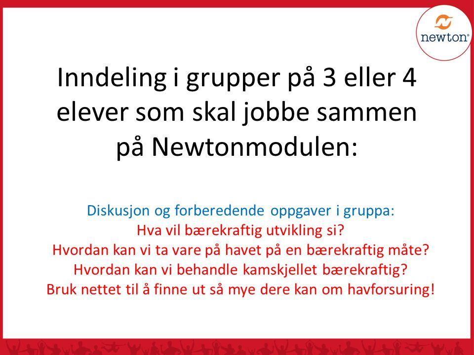Inndeling i grupper på 3 eller 4 elever som skal jobbe sammen på Newtonmodulen: