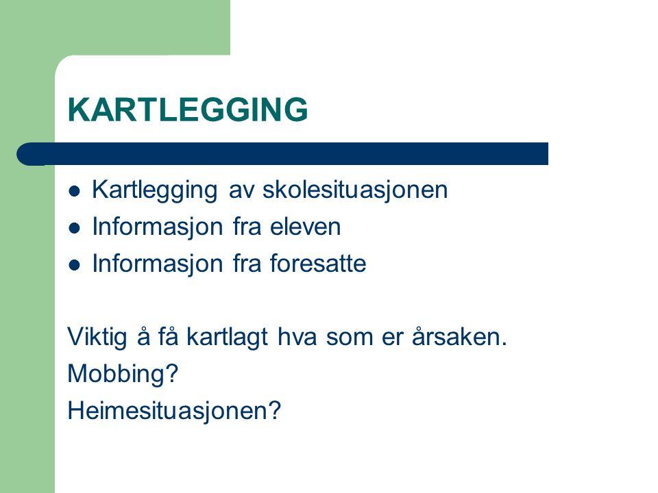 KARTLEGGING Kartlegging av skolesituasjonen Informasjon fra eleven