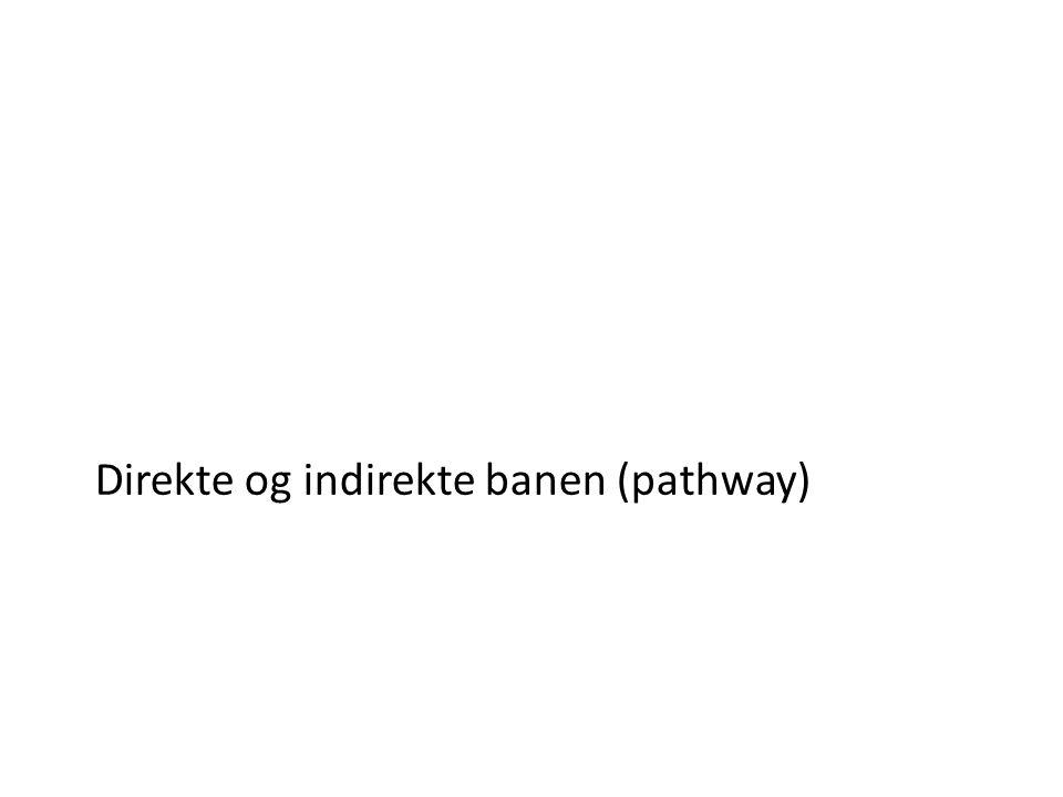 Direkte og indirekte banen (pathway)