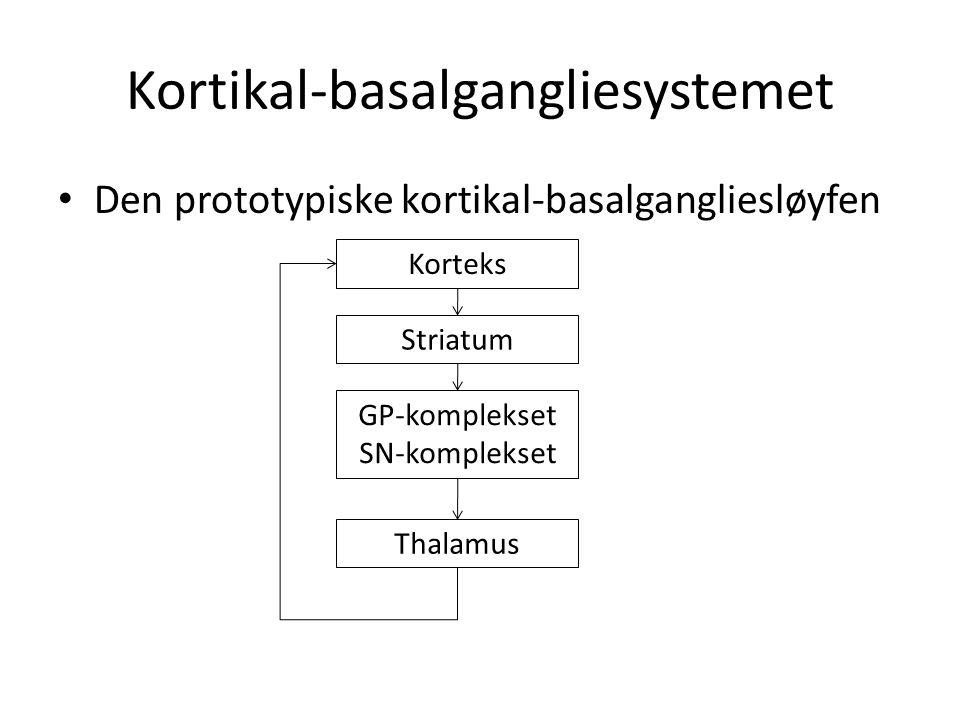 Kortikal-basalgangliesystemet